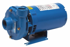 3642/3742 Series End Suction Pumps