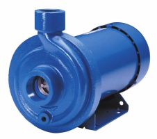 MCC Cast Iron/Stainless Fitted End Suction Pumps