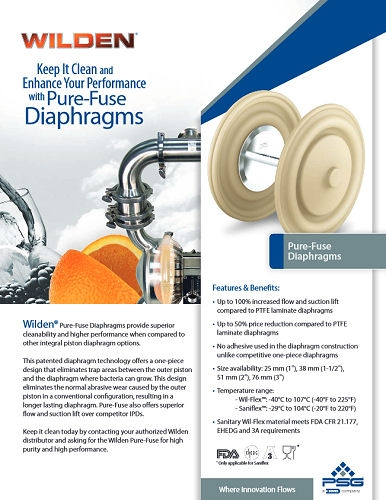 Pure-Fuse IPD Flyer