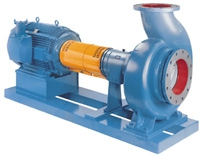 3180 Heavy Duty Process Pump