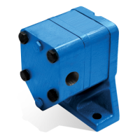 External Gear Pumps
